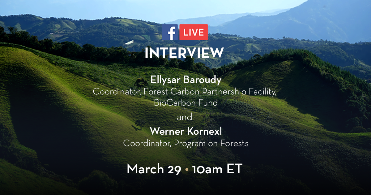 Why forests matter to you and your community: A FaceBook Live interview with PROFOR and the World Bank